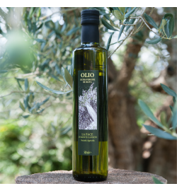 Extra Virgin Olive Oil - Olio extra vergine d'oliva 2017/2018 dorica 500ml